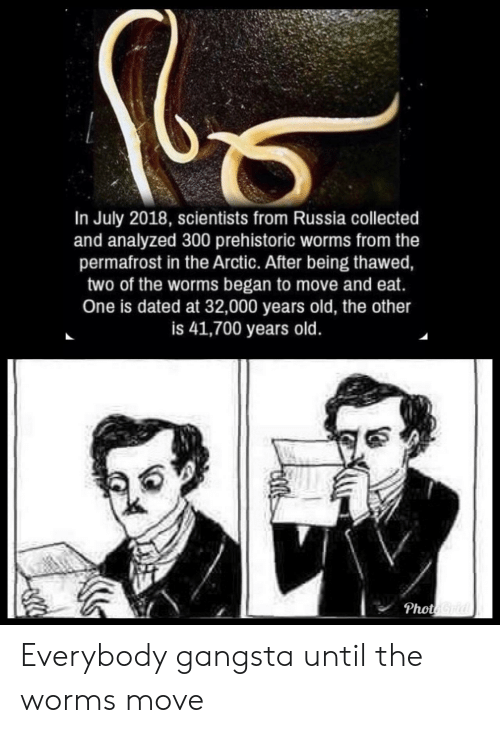gangsta: In July 2018, scientists from Russia collected  and analyzed 300 prehistoric worms from the  permafrost in the Arctic. After being thawed,  two of the worms began to move and eat.  One is dated at 32,000 years old, the other  is 41,700 years old  Phot Everybody gangsta until the worms move