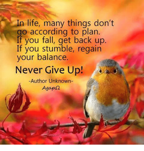 Fall: In life, many things don't  go according to plan.  If you fall, get back up  If you stumble, regain  your balance  Never Give Up!  -Author Unknown-  Agapd2