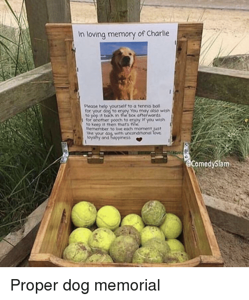 Memorial: In loving memory of Charlie  Please help yourself to a tennis bal  your dog to enjoy You may also wish  to pop it back in the box afterwards  for another pooch to erjoy If you wmsh  to Keep it then thars fine  Remember to live each moment just  e your dog with unconditional  oyalty and happiness *  omedySlam Proper dog memorial