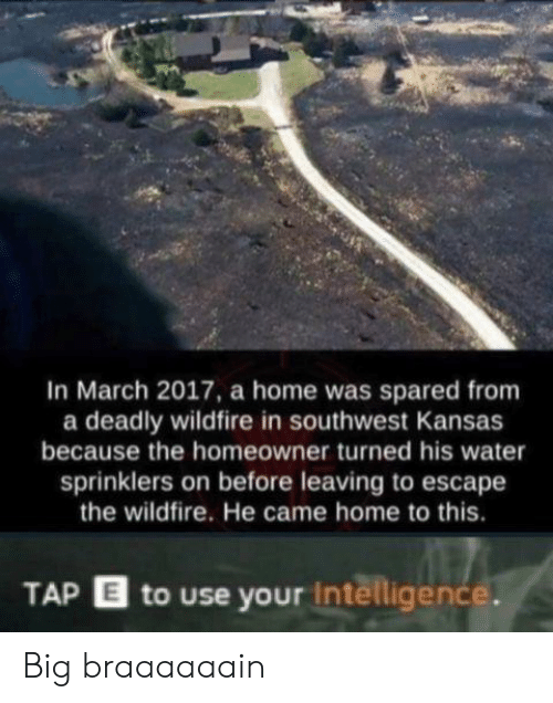 kansas: In March 2017, a home was spared from  a deadly wildfire in southwest Kansas  because the homeowner turned his water  sprinklers on before leaving to escape  the wildfire. He came home to this.  TAP E to use your intelligence. Big braaaaaain