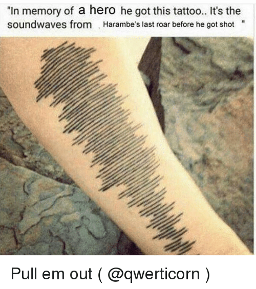 "Tattoos, Heroes, and Tattoo: ""In memory of a hero he got this tattoo.. It's the  soundwaves from Harambe's last roar before he got shot Pull em out ( @qwerticorn )"