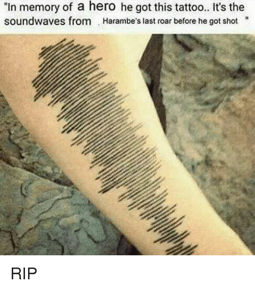 "Dank, Tattoos, and Heroes: ""In memory of a hero he got this tattoo.. It's the  soundwaves from Harambe's last roar before he got shot RIP"
