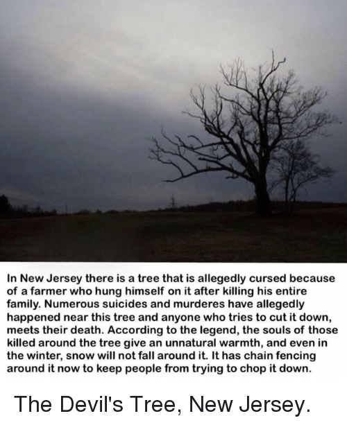 memes: In New Jersey there is a tree that is allegedly cursed because  of a farmer who hung himself on it after killing his entire  family. Numerous suicides and murderes have allegedly  happened near this tree and anyone who tries to cut it down,  meets their death. According to the legend, the souls of those  killed around the tree give an unnatural warmth, and even in  the winter, snow will not fall  around it. It has chain fencing  around it now to keep people from trying to chop it down. The Devil's Tree, New Jersey.