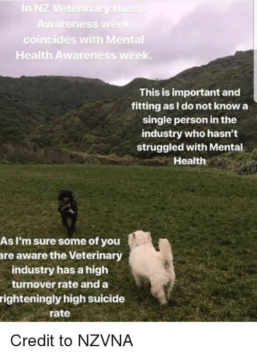 Memes, Suicide, and Single: In Nz  Awareness  we  coincides with Mental  Health Awareness week.  This is important and  fitting as I do not know a  single person in the  industry who hasn't  struggled with Mental  Health  As I'm sure some of you  are aware the Veterinary  industry has a high  turnover rate and a  righteningly high suicide  rate Credit to NZVNA