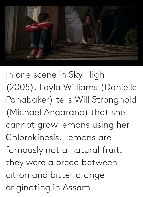 danielle: In one scene in Sky High (2005), Layla Williams (Danielle Panabaker) tells Will Stronghold (Michael Angarano) that she cannot grow lemons using her Chlorokinesis. Lemons are famously not a natural fruit: they were a breed between citron and bitter orange originating in Assam.