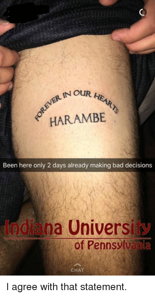 Bad, Dank, and Chat: IN OUR  HARAMBE  Been here only 2 days already making bad decisions  y  odi na Universi  of Pennsylva  ia  CHAT I agree with that statement.