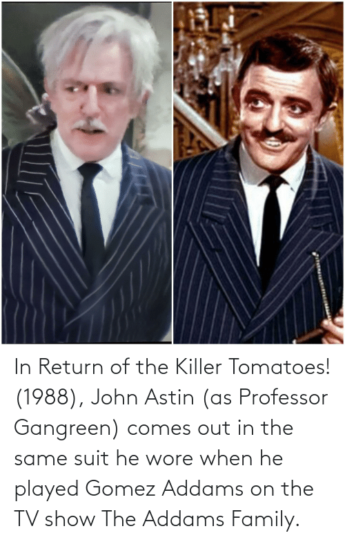 the addams family: In Return of the Killer Tomatoes! (1988), John Astin (as Professor Gangreen) comes out in the same suit he wore when he played Gomez Addams on the TV show The Addams Family.