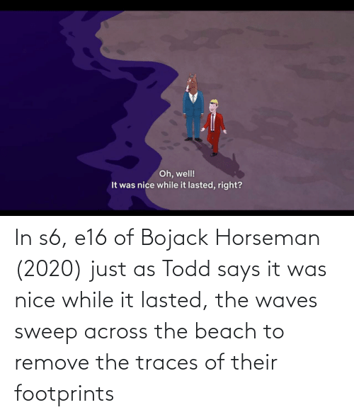 the beach: In s6, e16 of Bojack Horseman (2020) just as Todd says it was nice while it lasted, the waves sweep across the beach to remove the traces of their footprints