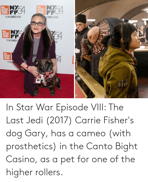 Rollers: In Star War Episode VIII: The Last Jedi (2017) Carrie Fisher's dog Gary, has a cameo (with prosthetics) in the Canto Bight Casino, as a pet for one of the higher rollers.