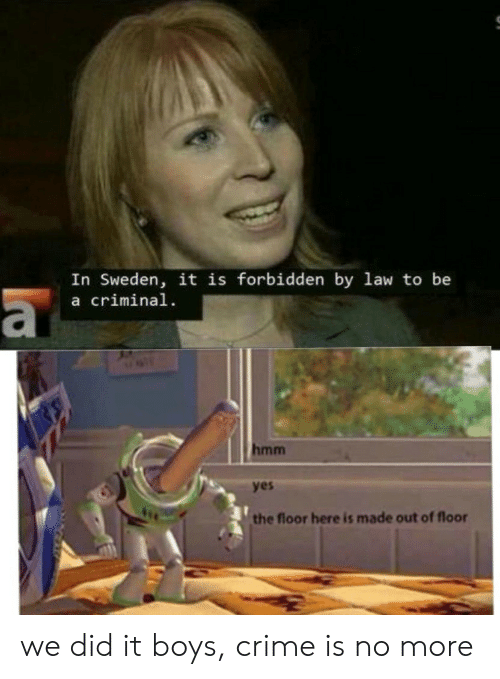 Sweden: In Sweden, it is forbidden by law to be  a criminal  a  hmm  yes  the floor here is made out of floor we did it boys, crime is no more