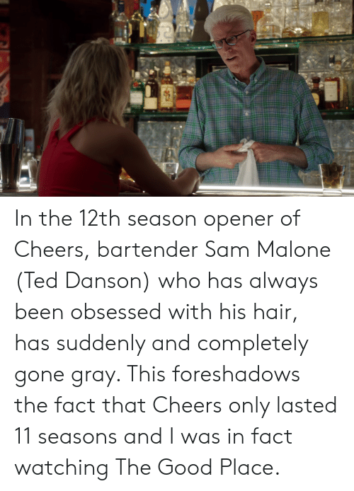 sam malone: In the 12th season opener of Cheers, bartender Sam Malone (Ted Danson) who has always been obsessed with his hair, has suddenly and completely gone gray. This foreshadows the fact that Cheers only lasted 11 seasons and I was in fact watching The Good Place.