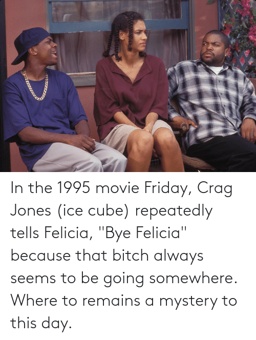 "bye felicia: In the 1995 movie Friday, Crag Jones (ice cube) repeatedly tells Felicia, ""Bye Felicia"" because that bitch always seems to be going somewhere. Where to remains a mystery to this day."