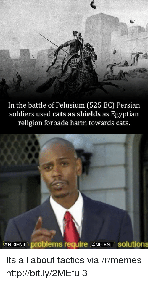 Persian: In the battle of Pelusium (525 BC) Persian  soldiers used cats as shields as Egyptian  religion forbade harm towards cats.  ANCIENT problems require ANCIENT solutions Its all about tactics via /r/memes http://bit.ly/2MEfuI3