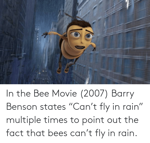 """the bee movie: In the Bee Movie (2007) Barry Benson states """"Can't fly in rain"""" multiple times to point out the fact that bees can't fly in rain."""