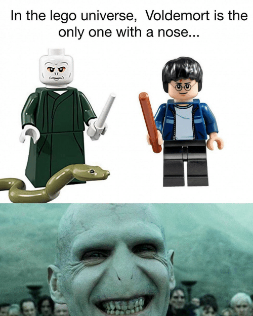 lego universe: In the lego universe, Voldemort is the  only one with a nose...