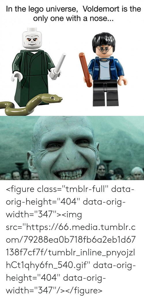 "lego universe: In the lego universe, Voldemort is the  only one with a nose... <figure class=""tmblr-full"" data-orig-height=""404"" data-orig-width=""347""><img src=""https://66.media.tumblr.com/79288ea0b718fb6a2eb1d67138f7cf7f/tumblr_inline_pnyojzIhCt1qhy6fn_540.gif"" data-orig-height=""404"" data-orig-width=""347""/></figure>"