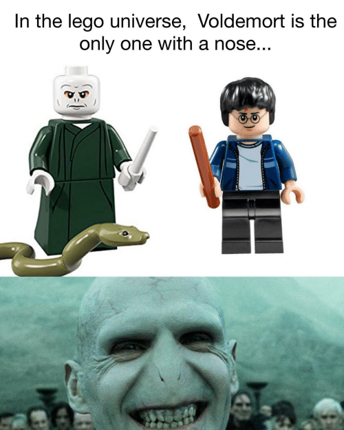 lego universe: In the lego universe, Voldemort is the  only one with a nose