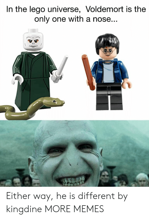 lego universe: In the lego universe, Voldemort is the  only one with a nose Either way, he is different by kingdine MORE MEMES