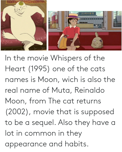 the heart: In the movie Whispers of the Heart (1995) one of the cats names is Moon, wich is also the real name of Muta, Reinaldo Moon, from The cat returns (2002), movie that is supposed to be a sequel. Also they have a lot in common in they appearance and habits.