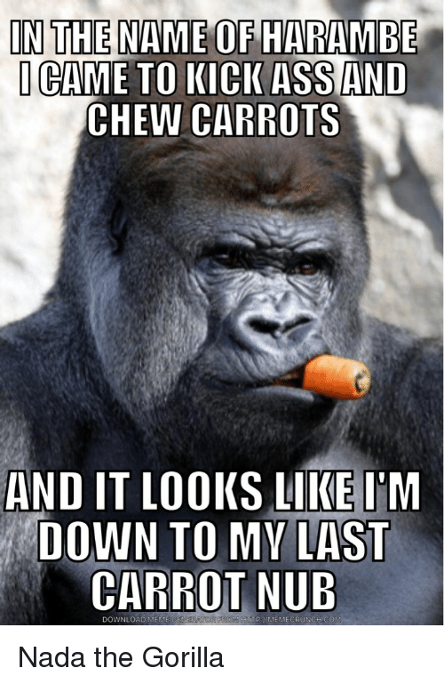 Ass, Meme, and Memes: IN THE NAME OF HARAMBE  I CAME TO KICK ASS AND  CHEW CARROTS  AND IT LOOKS LIKE IM  DOWN TO MY LAST  CARROT NUB  DOWNLOAD MEME  GEN Nada the Gorilla