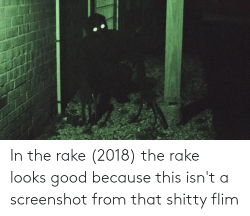Looks Good: In the rake (2018) the rake looks good because this isn't a screenshot from that shitty flim
