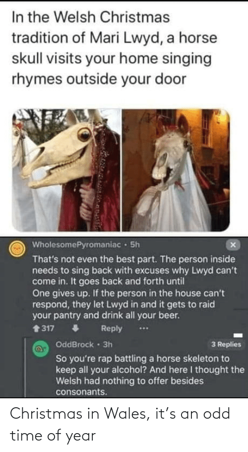 Replies: In the Welsh Christmas  tradition of Mari Lwyd, a horse  skull visits your home singing  rhymes outside your door  WholesomePyromaniac · 5h  That's not even the best part. The person inside  needs to sing back with excuses why Lwyd can't  come in. It goes back and forth until  One gives up. If the person in the house can't  respond, they let Lwyd in and it gets to raid  your pantry and drink all your beer.  1317  Reply  ...  OddBrock 3h  3 Replies  So you're rap battling a horse skeleton to  keep all your alcohol? And here I thought the  Welsh had nothing to offer besides  consonants. Christmas in Wales, it's an odd time of year