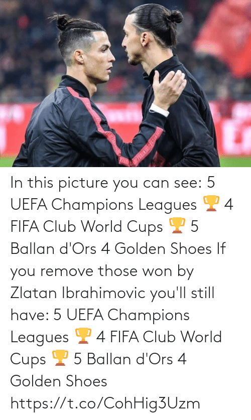 zlatan: In this picture you can see:  5 UEFA Champions Leagues 🏆 4 FIFA Club World Cups 🏆 5 Ballan d'Ors 4 Golden Shoes   If you remove those won by Zlatan Ibrahimovic you'll still have:   5 UEFA Champions Leagues 🏆 4 FIFA Club World Cups 🏆 5 Ballan d'Ors 4 Golden Shoes https://t.co/CohHig3Uzm