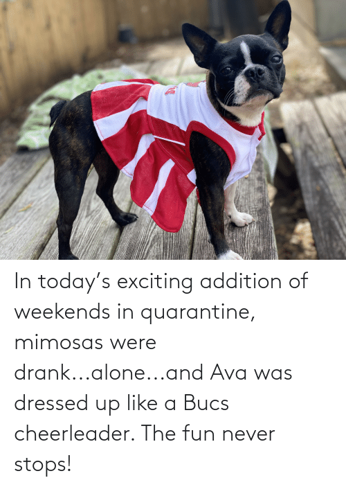 Weekends: In today's exciting addition of weekends in quarantine, mimosas were drank...alone...and Ava was dressed up like a Bucs cheerleader. The fun never stops!