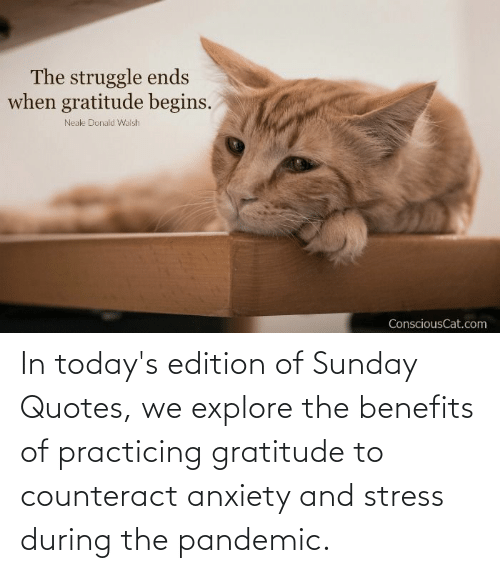 stress: In today's edition of Sunday Quotes, we explore the benefits of practicing gratitude to counteract anxiety and stress during the pandemic.
