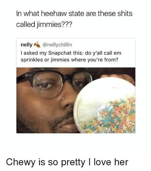 sprinkles: In what heehaw state are these shits  called jimmies???  nelly @nellychillin  I asked my Snapchat this: do y'all call em  sprinkles or jimmies where you're from? Chewy is so pretty I️ love her