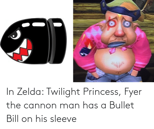 Twilight: In Zelda: Twilight Princess, Fyer the cannon man has a Bullet Bill on his sleeve
