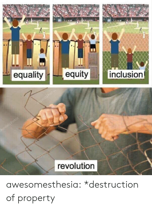 inclusion: || inclusion  equalityequity  revolution awesomesthesia:  *destruction of property