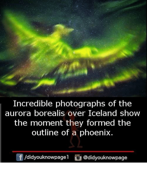 aurora borealis: Incredible photographs of the  aurora borealis over Iceland show  the moment they formed the  outline of a phoenix.  /didyouknowpagel @didyouknowpage