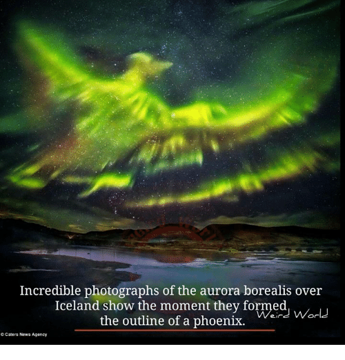 aurora borealis: Incredible photographs of the aurora borealis over  Iceland the they formed  the outline of a phoenix.  World  Caters News Agency
