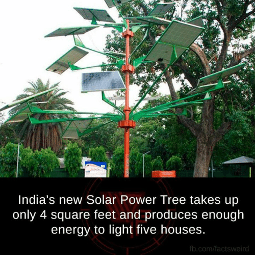 fb.com: India's new Solar Power Tree takes up  only 4 square feet and produces enough  energy to light five houses.  fb.com/factsweird
