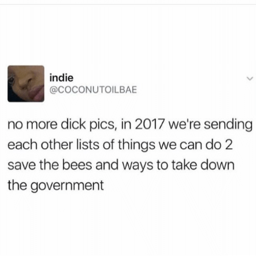Dick Pics, Memes, and Dick: indie  @COCONUTOILBAE  no more dick pics, in 2017 we're sending  each other lists of things we can do 2  save the bees and ways to take down  the government