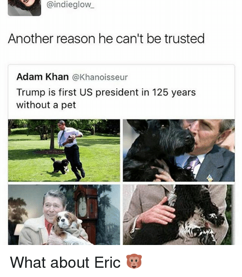 Funny, Trump, and Reason: @indieglow  Another reason he can't be trusted  Adam Khan  @Khanoisseur  Trump is first US president in 125 years  without a pet What about Eric 🐵