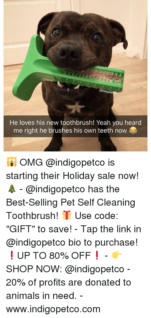 """Toothbrush: @indigope  He loves his new toothbrush! Yeah you heard  me right he brushes his own teeth now 🙀 OMG @indigopetco is starting their Holiday sale now! 🎄 - @indigopetco has the Best-Selling Pet Self Cleaning Toothbrush! 🎁 Use code: """"GIFT"""" to save! - Tap the link in @indigopetco bio to purchase! ❗️UP TO 80% OFF❗️ - 👉 SHOP NOW: @indigopetco - 20% of profits are donated to animals in need. - www.indigopetco.com"""