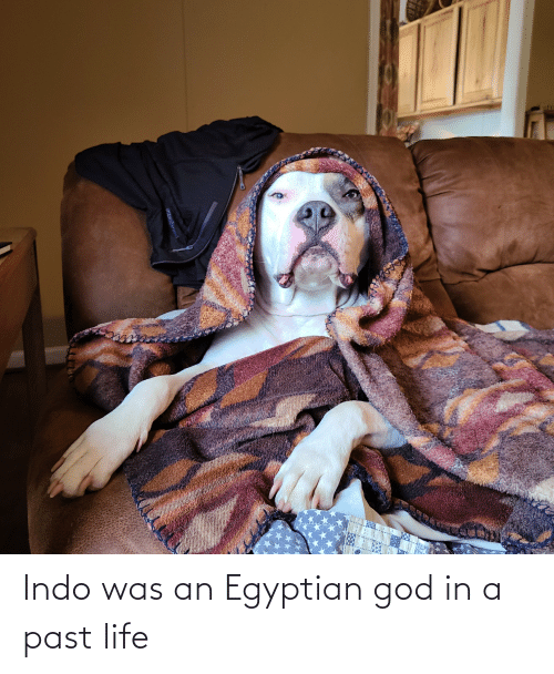 Egyptian: Indo was an Egyptian god in a past life