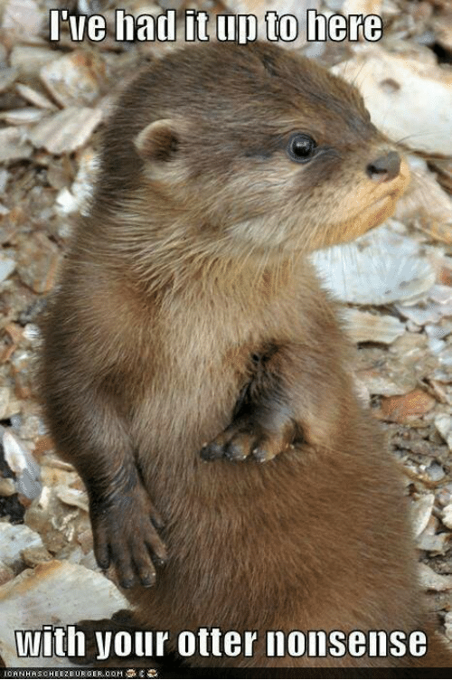 otter nonsense: Ine had it up to  here  with your otter nonsense
