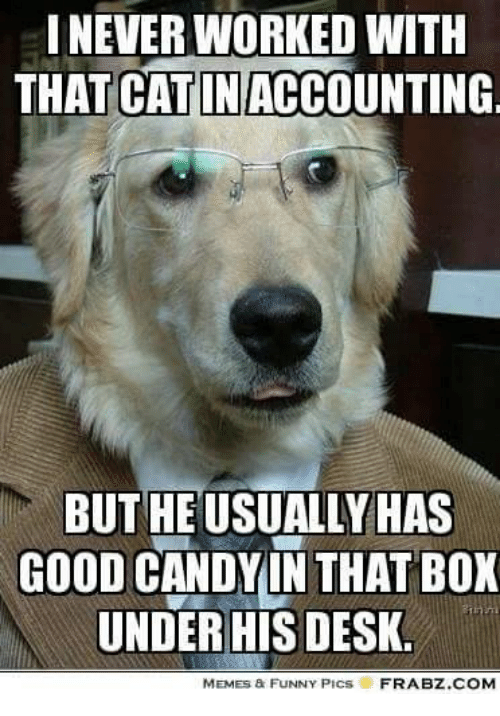 Boxing, Candy, and Memes: INEVER WORKED WITH  THAT CAT IN ACCOUNTING  BUTHEUSUALLY HAS  GOOD CANDY IN THAT BOX  UNDERHIS DESK  MEMEs a FUNNY PICs  FRABZ COM
