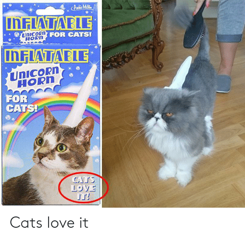 Horhs: INFLATABLE  FOR CATS!  HORH  inFLATIABLE  UnICORD  HORn  FOR  CATS Cats love it