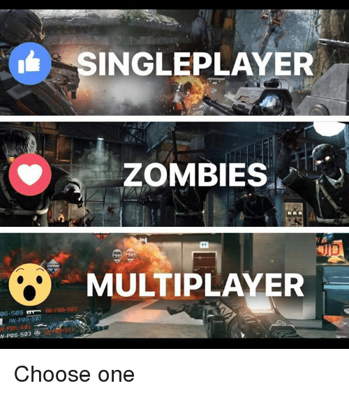 Choose One, Video Games, and Zombies: INGLEPLAYER  ZOMBIES  MULTIPLAYER  PO6-S01  06-S09 Choose one