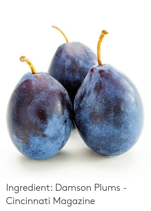 Damson Plums: Ingredient: Damson Plums - Cincinnati Magazine