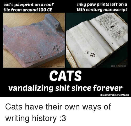 Vandalizers: inky paw prints left on a  cat's pawprint on aroof  15th century manuscript  tile from around 100 CE  EMIRO FILIPOWIC  STER CITY MUSEUM  CATS  vandalizing shit since forever  fb.com/ProScienceMama Cats have their own ways of writing history :3