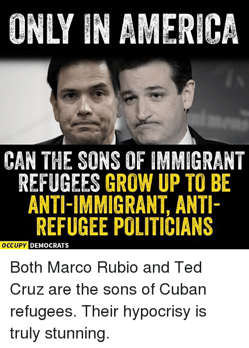 Memes, Ted Cruz, and Marco Rubio: INLY IN AMERICA  CAN THE SONS OF IMMIGRANT  REFUGEES GROW UP TO BE  ANTI-IMMIGRANT, ANTI-  REFUGEE POLITICIANS  OCCUPY DEMOCRATS Both Marco Rubio and Ted Cruz are the sons of Cuban refugees. Their hypocrisy is truly stunning.