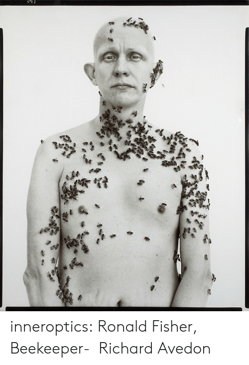 fisher: inneroptics:    Ronald Fisher, Beekeeper-   Richard Avedon