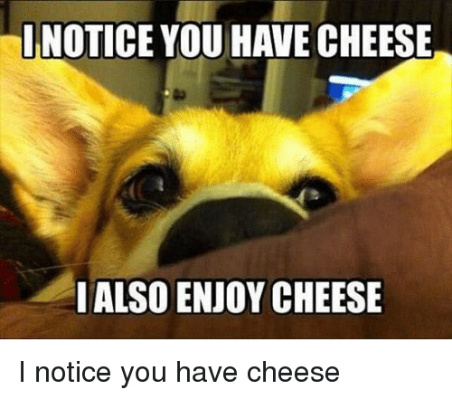 Cheese, You, and Alsoe: INOTICE YOU HAVE CHEESE  I ALSO ENJOY CHEESE I notice you have cheese