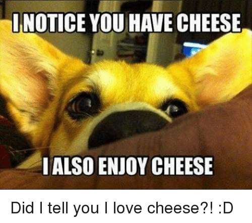 Love, Memes, and 🤖: INOTICE YOU HAVE CHEESE  I ALSOENJOY CHEESE Did I tell you I love cheese?! :D