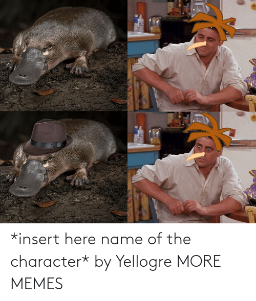 character: *insert here name of the character* by Yellogre MORE MEMES